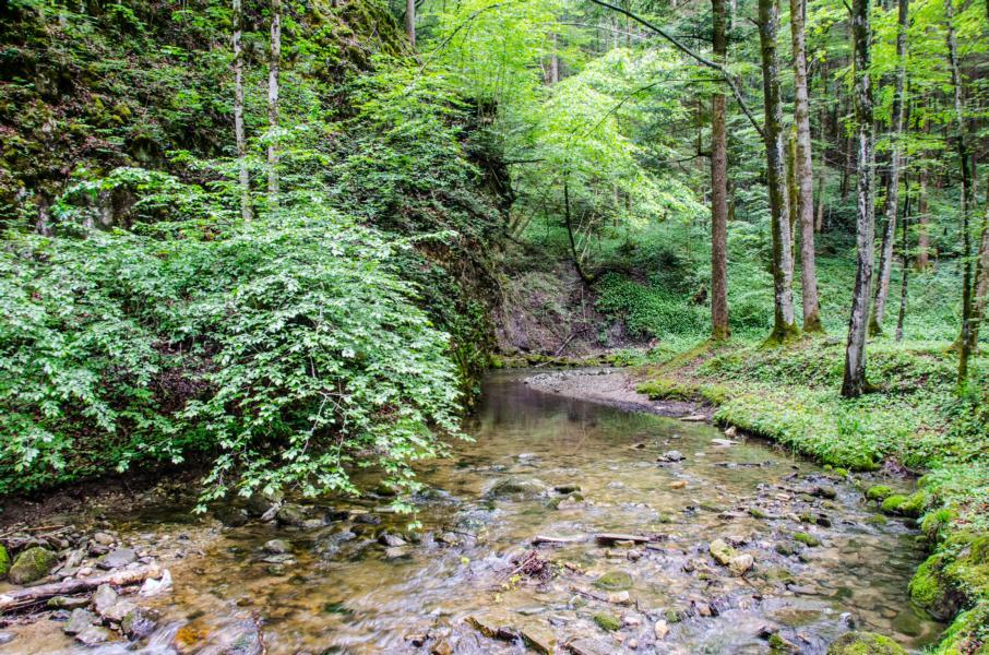 Oberer Teil vom Sulzbach, bevor es in die Klamm geht Richtung Perneck
