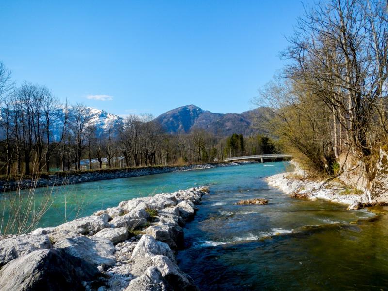 Fischaufstiegshilfe Sulzbach wurde gut angenommen ...