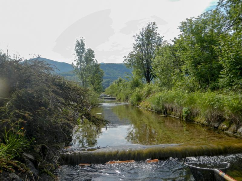 Sulzbach Kaskaden