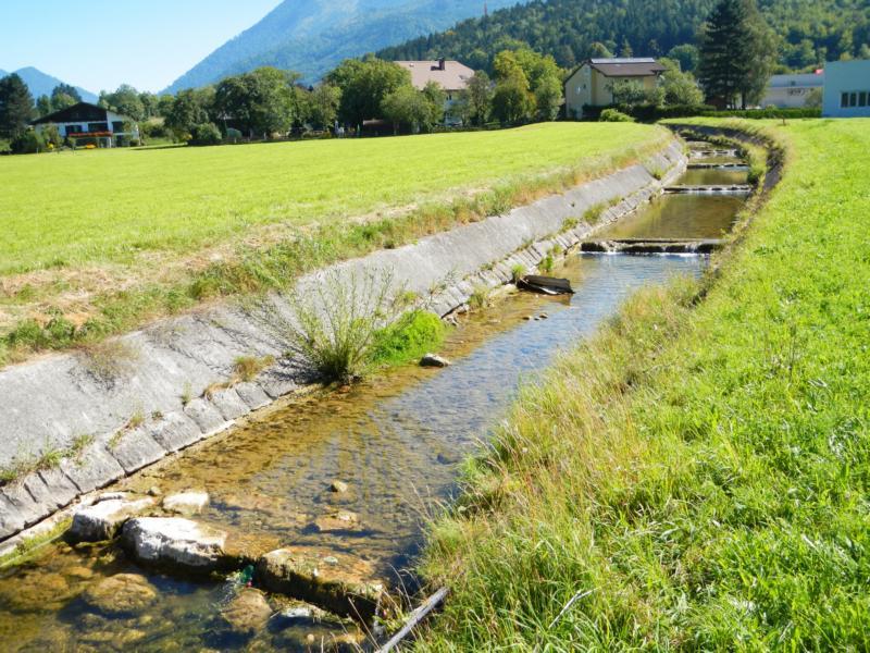 Der Sulzbach mit seinen Kaskaden im Unterlauf