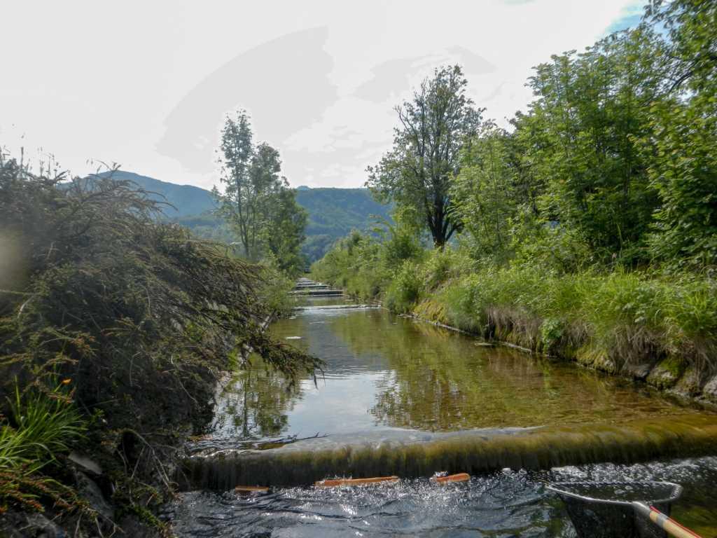Unterlauf Sulzbach mit den betonierten Kaskaden