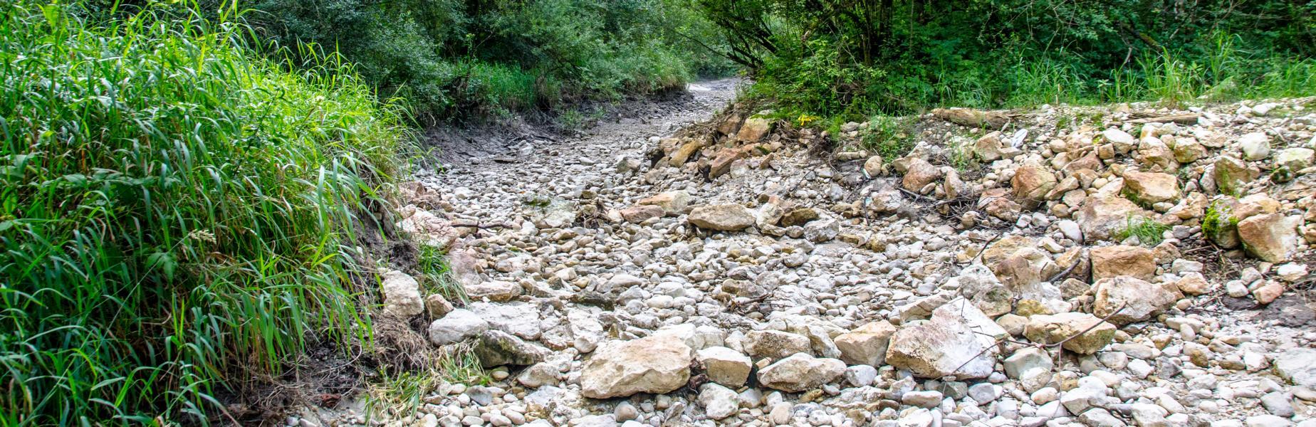 Die Alte Traun ist ausgetrocknet - 10. August 2012