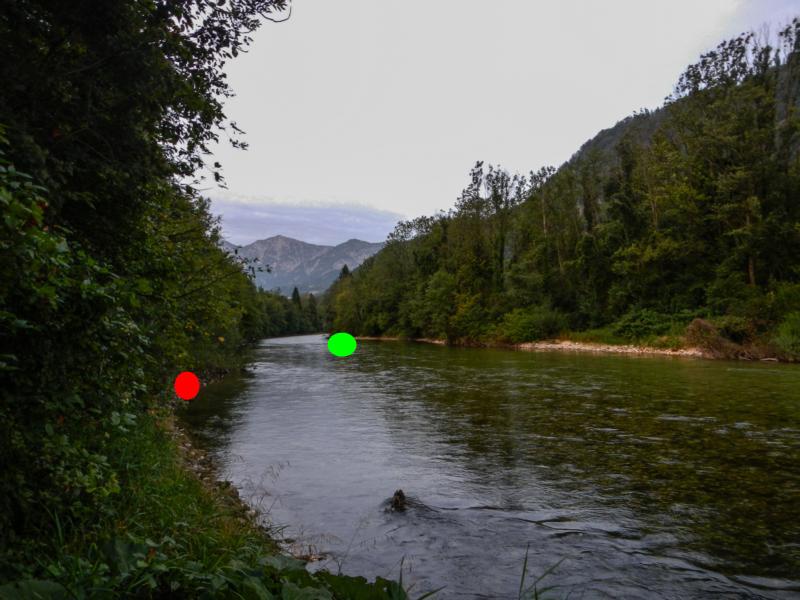 Roter Punkt = Besatzstelle vom 19.8. und Fundstelle 22.8. von 4 Stk. Schwarzen BF, Roter Punkt = Fundstelle von 4 toten BF Setzlingen am 22.8.2012