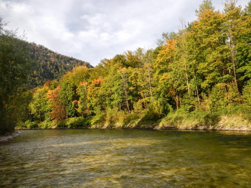 """Hier ist auch ein guter Platz für Herbst Äschen! Wenn der Pegel unter 185 cm ist, kann man hier sehr gut """"linksufrig"""" fischen!"""