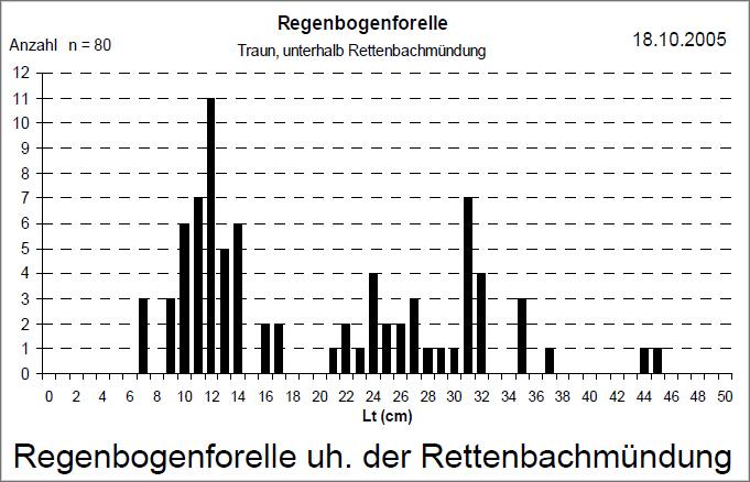 RBF uh Rettenbach 2005_HAH_HC_039
