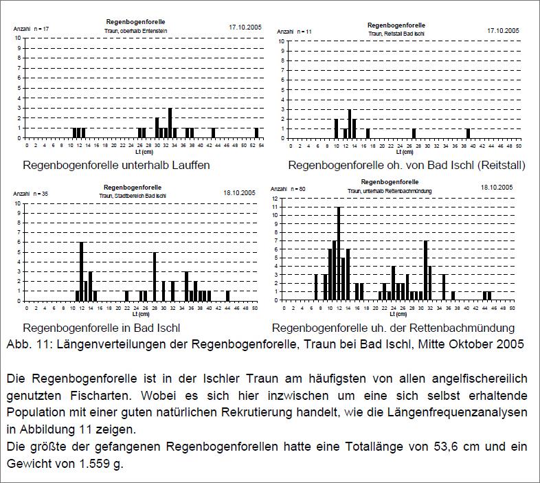 Längenverteilung RBF Quelle: Fischbestandserhebung der Traun bei Bad Ischl 2005