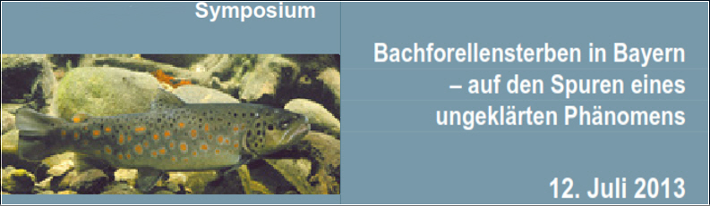 Symposium BF Sterben 12_7_13
