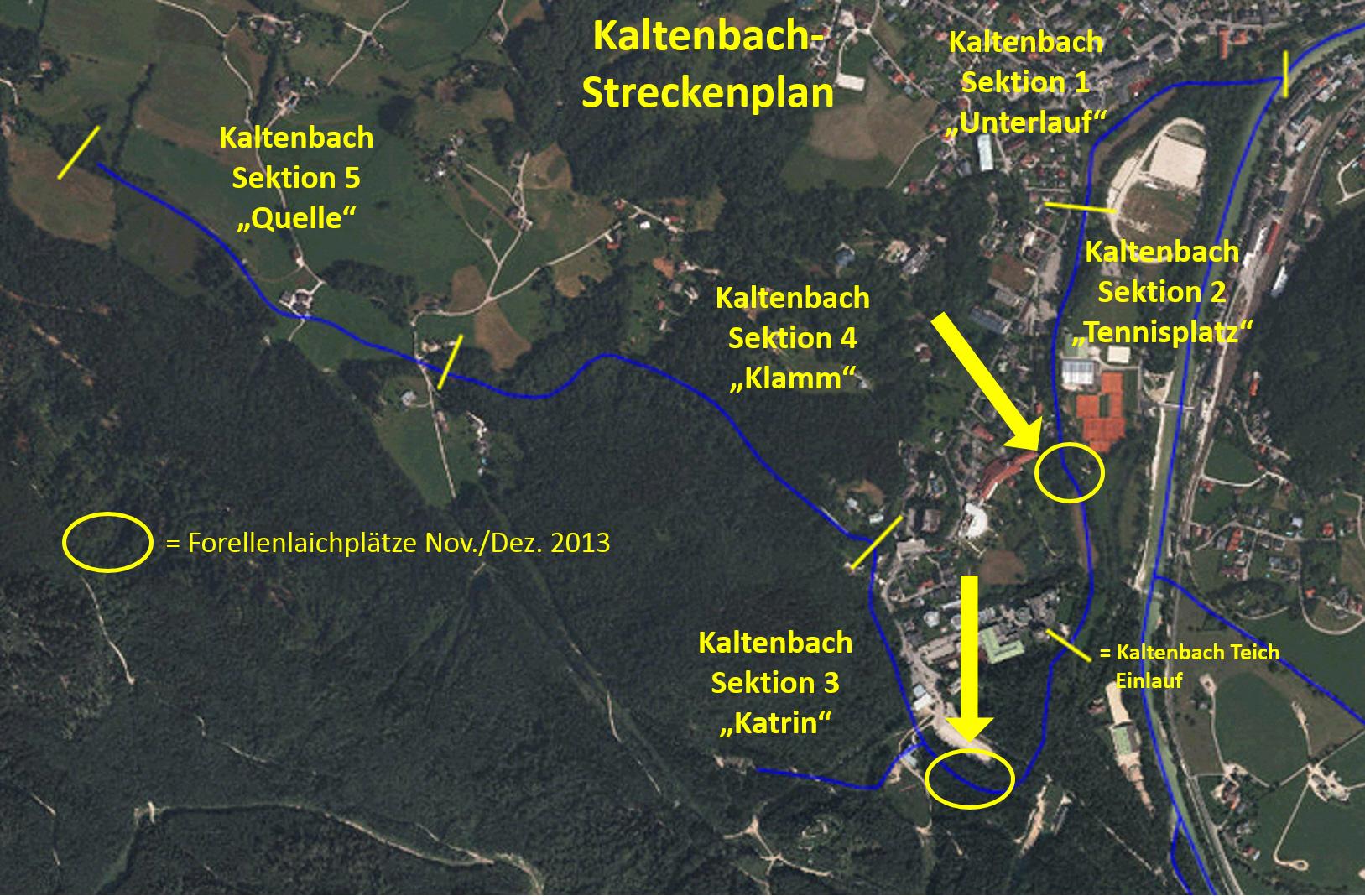 Laichplaetze Kaltenbach 2013_HAH_150